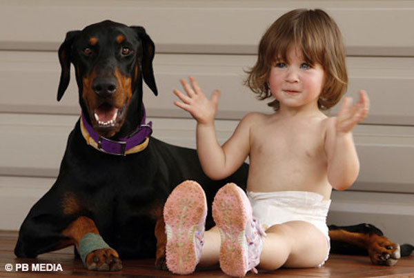 A-Doberman-Pincher-named-Khan-saves-baby-from-deadly-snake-attack-1